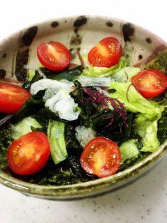 海藻トロッとサラダ調理例